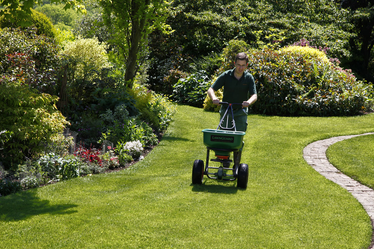 lawn_treatment_services